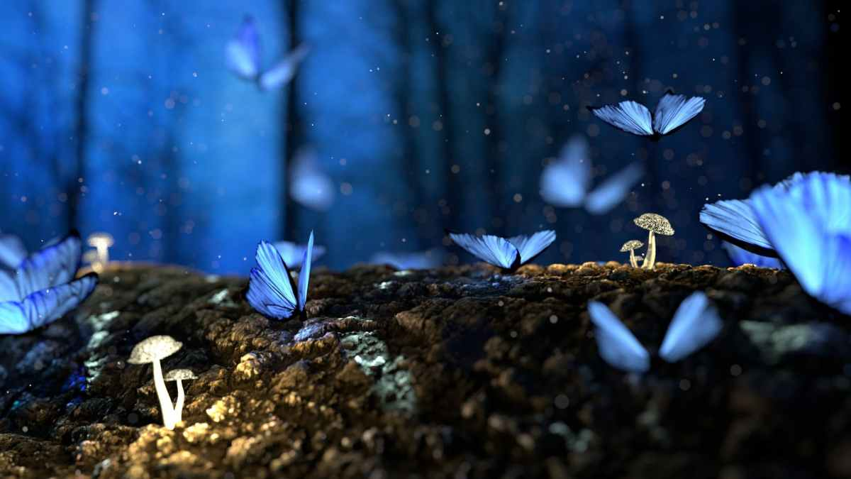 Blue iridescent butterflies and white mushrooms on a log at night
